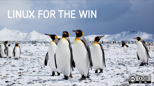 Penguins gathered together: Linux for the win