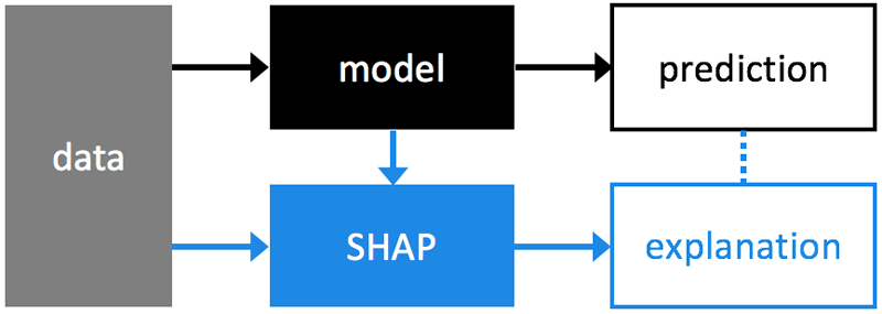 Where SHAP fits into the data analysis process